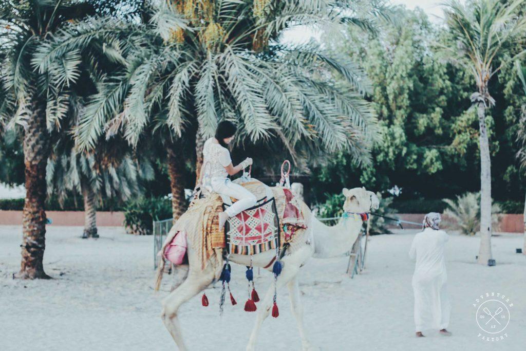 AdventureFaktory at the Emirates Palace