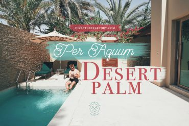 AdventureFaktory x Per Aquum Desert Palm