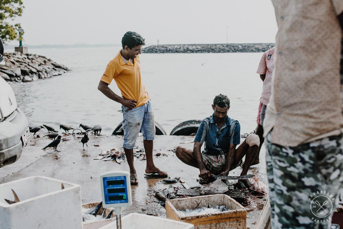 Sri Lanka Fish Village
