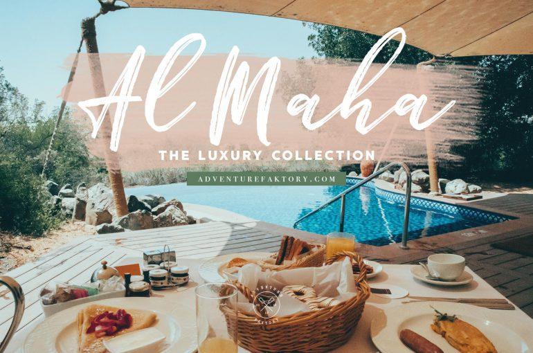 Al maha luxury collection desert resort spa a journey in the al maha resort m4hsunfo