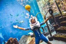 Atlantis Dubai AquaTrek