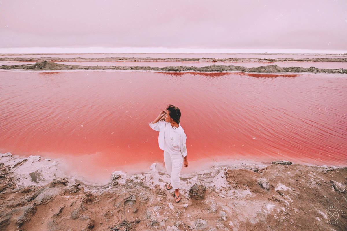 Pink Salt Flats of Namibia