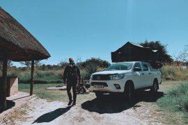 Chobe National Park Self-Drive Guide
