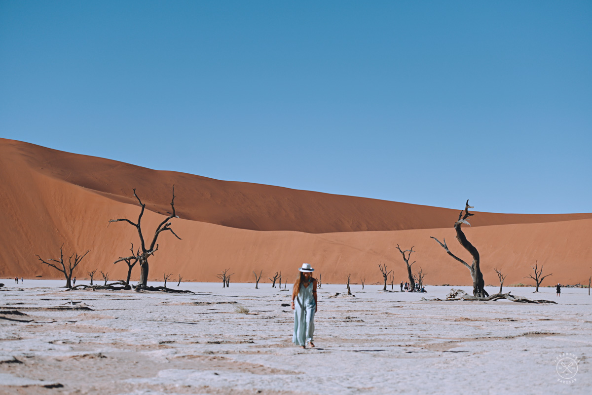 How to visit Sossusvlei and Deadvlei