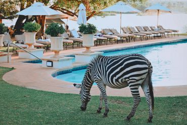 Royal Livingstone by Anantara Zambia