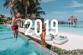 Thuymi & Mitch Year in review 2019