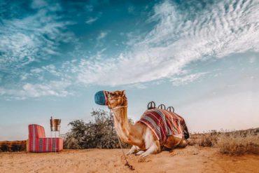 Ritz-Carlton Ras Al Khaimah, Al Wadi
